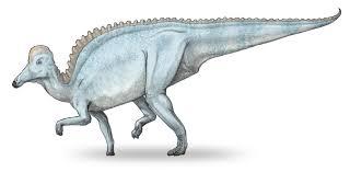 Amurosaurus