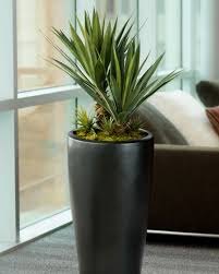 artificial plants for office decor. Large Succulent Agave Americana Artificial Plant Is Lifelike And Nature When Displayed Alone Or With Other Plants For Office Decor