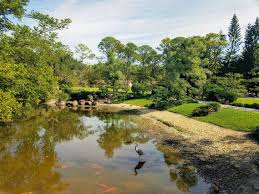 go find your inner peace at the morikami gardens miami herald