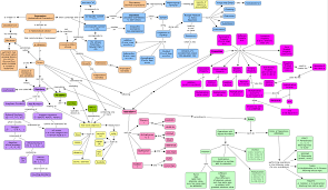 foundations for algebra concept map  reflections of a second