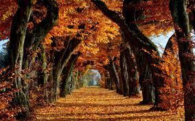 12++ Wallpaper Desktop Autumn Scenes ...