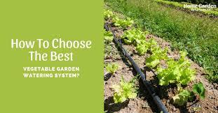 best vegetable garden watering system