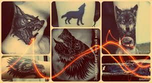 значение тату черный волк смысл история фото эскизы рисунков