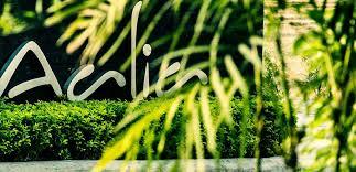Aalia On The Ganges Hotel Media News And Awards Of Aalia Luxury Resort Haridwar