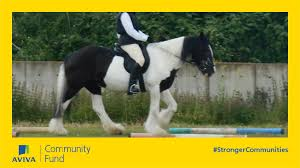 New Lodge Riding for the Disaled - New horse - a Sports crowdfunding  project in London by Hilary Crawford