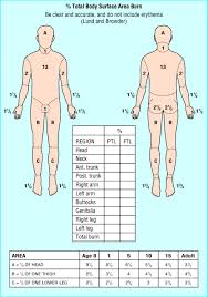 Injury Location Chart Body Map Burn Area Www Forensicmed Co Uk
