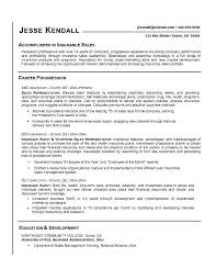 Gallery Of Insurance Sales Representative Resume Accomplished In