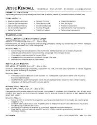 Executive Resume Example Resume Templates