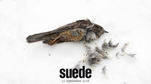 <b>Suede - The Blue</b> Hour (Trailer 1) - YouTube