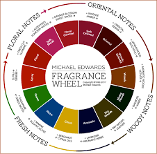 Classification Of Fragrances Best Selling Perfume