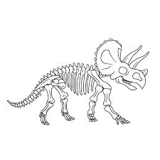 Kleurplaat Skelet Dinosaurus Kleurplaten Dino Skelet Kleurplaten