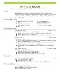 Curriculum Vitae Interior Design Resume Application Developer Cv