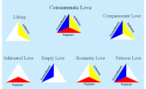 what does in love mean silver girl the triangular theory