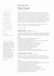 Project Manager Resume Sample New Email Marketing Resume Samples