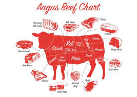 Angus Beef Cuts Chart Cow Cuts Stock Illustrations 805 Cow Cuts Stock