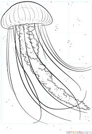jellyfish drawing for kids.  Drawing How To Draw A Jellyfish Step By Step Drawing Tutorials For Kids And  Beginners On Jellyfish For Kids R
