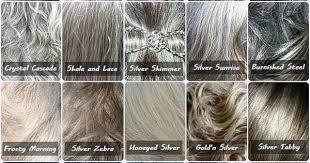 Gray Hair Color Chart Gray Hair Color Chart Fepa Philately Com