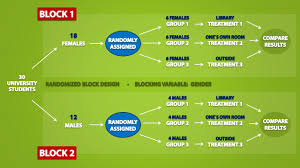 Simple True Experimental Design Types Of Experimental Designs 3 3
