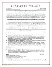 Professional Resume Writers Resumes Writer Dallas Unique Nyc Of