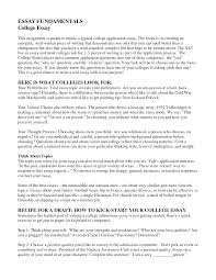 examples of essay outlines persuasive essays examples and college