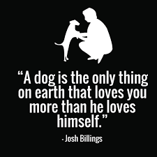 Nice Quotes About Love Interesting 48 Cute Dog Quotes for Dog Lovers with Funny Images