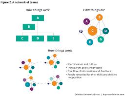 Collaborative Org Chart The Organization Of The Future Deloitte Insights