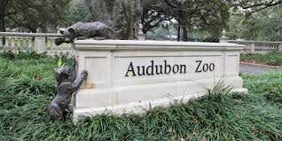 Image result for new orleans garden zoo