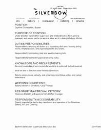 41 Luxury Images Of Dishwasher Job Description For Resume
