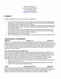 Sample Resume For Retail Sales Executive