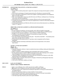 Management Resume Access Management Resume Samples Velvet Jobs 12