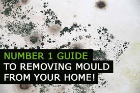 how to remove mould from walls
