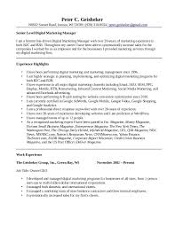 Sales And Marketing Manager Resumes Peter Geisheker Digital Marketing Manager Resume