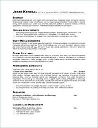 Career Focus On Resumes Career Focus On Resume Luxury Professional Summary Resume New Career