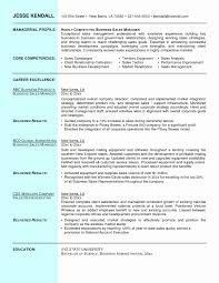 Accounts Executive Resume Word Format Awesome Sales Resume Example