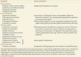 Penicillins Cephalosporins And Other Lactam Antibiotics