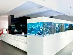 aquarium furniture design. Project The Local River \u2013 Aquarium Wheels Furniture Design U