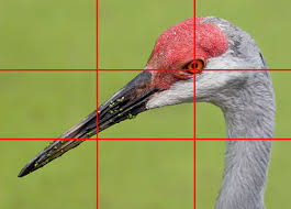 rule of thirds photography. Photography Rule Of Thirds