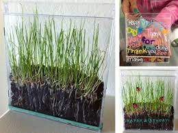 Making A Cd Case Growing Grass In A Cd Case Art Projects For Kids