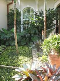 Small Picture 4302 best Tropical design images on Pinterest Gardens Tropical