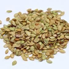 garden seed. Pensacola Bahiagrass - 50 Lb Bag Garden Seed