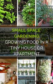 apartment gardening.  Gardening Small Space Gardening Growing Food In A Tiny House Or Apartment  Follow  These Small Space Gardening Ideas To Grow Your Own Healthy And Organic Food  Intended Gardening R