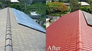 roof painters milnerton