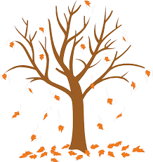 Trees Without Leaves Coloring Pages Leave