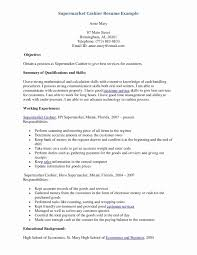 Resume Summary Examples Sample Resume With Summary Of Qualifications Awesome Resume 84