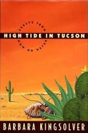 high tide in tucson  high tide in tucson