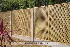 garden fencing dublin clementine trellis