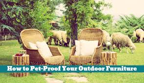 how to pet proof your outdoor furniture