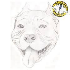 pitbull dog face drawing. Simple Drawing How To Draw A Pitbull Face  Google Search Inside Pitbull Dog Face Drawing I