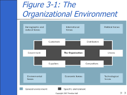 Organizational Domain Chart Ch03 Organisation Theory Design And Change Gareth Jones