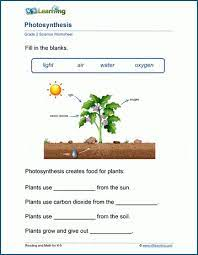 This bundle of plant worksheets contains 7 activities for use in the classroom, including a plant life cycle worksheet, parts of a plant worksheet & more! Plants Worksheets K5 Learning